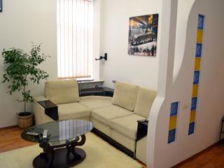 Charming one-bedroom apartment in Kiev's center - Mriya vacation rentals