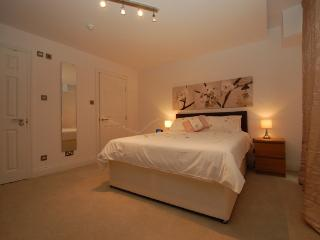 Luxurious Trafalgar Square Duplex in London - London vacation rentals