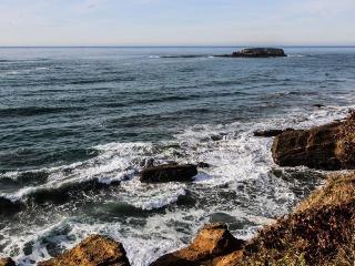Oceanfront studio w/ ocean views & easy beach access - dogs welcome! - Otter Rock vacation rentals