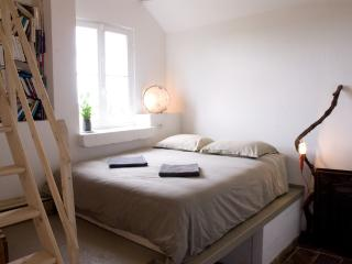 Idyllic guesthouse near Paris for up to 30 people - Gurcy-le-Chatel vacation rentals