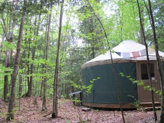 Mountain Brook Yurt Off-The-Grid Retreat - Denmark vacation rentals