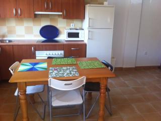 Rota apartment 200m Costilla beach - Rota vacation rentals