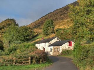 MAES-Y-FELIN, woodburner, en-suite facilities, rural views, upside down accommodation, detached cottage near Ffarmers, Ref. 18734 - Ffaldybrenin vacation rentals