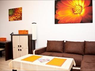 4 person studio in the city center, Elektoralna - Warsaw vacation rentals