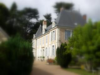 4 bedroom Bed and Breakfast with Internet Access in Pouille - Pouille vacation rentals