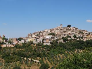 Il Sogno: Serene Elegance-Medieval Town near Rome - Casperia vacation rentals
