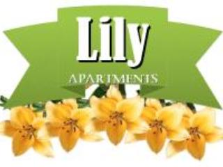 Lilly Apartments - Studio Apartment in the Heart of Zagreb - Zagreb - rentals