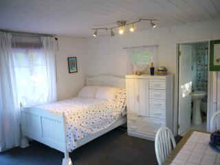 Malibu Adjacent Mountain/Beach Guest Studio - Topanga vacation rentals