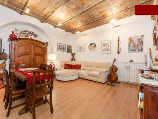 Charming apartment in Rome center - Milan vacation rentals