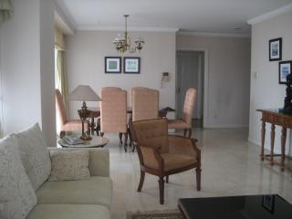 For Rent Fully Furnished Spacious 3 Bedroom Apartment in the Central of Jakarta - Jakarta vacation rentals