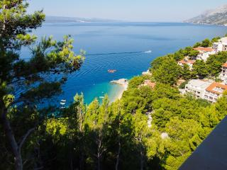Magnificent view Apartment BRDRAZ-A3(7+1) - Brela - Brela vacation rentals