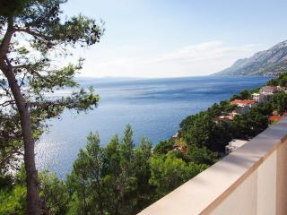 Magnificent view Apartment BRDRAZ-A1(4+0) - Brela - Brela vacation rentals