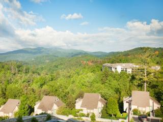 Breath-Taking 5-Star Resort Deluxe Villa - New Orleans vacation rentals