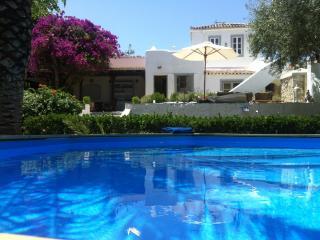 Spetses Villa in a wonderful Greek island garden - Spetses vacation rentals