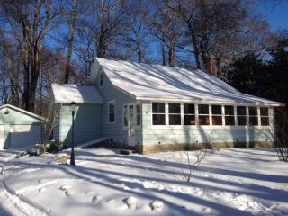 Cozy Cottage in winter - Fennville vacation rentals