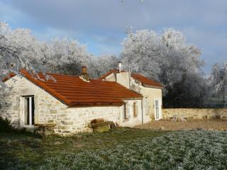 Charming Cottage on the countryside near Dijon, Burgundy - Arceau vacation rentals