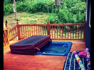 Fish Creek, WV Cabin - Direct Creek views from wrap around Porch w/ Hot tub! - Glen Easton vacation rentals