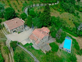 Priello, luxury farmhouse, gorgeous swimming pool - Caprese Michelangelo vacation rentals