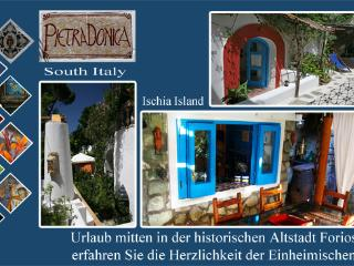 Pietra Donica B&b Historical center - Ischia vacation rentals