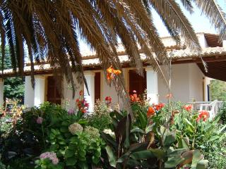 Villa (2) -3 bedrooms by the beach on Corfu island - Paxos vacation rentals