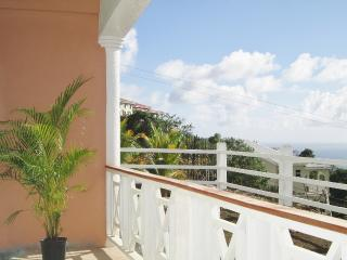 Oliph Blossome- 2Bd 2Bth Villa w/ WIFI - Saint James vacation rentals