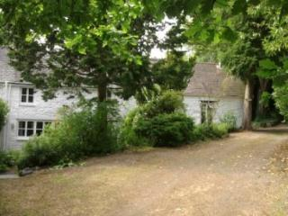 Charming Farmhouse character and relaxing - Machynlleth vacation rentals