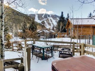 Dog-friendly lodge w/ private hot tub, mountain views, and centralized location! - Ketchum vacation rentals