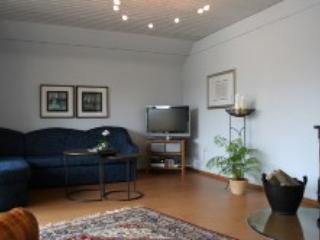Vacation Apartment in Aidhausen - 1238 sqft, 5-star-apartement, well-maintained, central, modern (#… - Friesenhausen vacation rentals