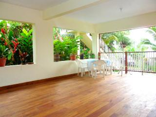 Beautiful B&B with Internet Access and Parking - Port Antonio vacation rentals