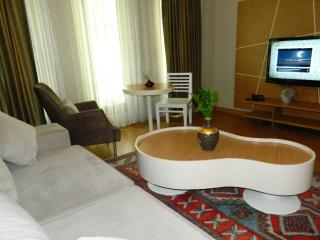 Deluxe Apartment at Taksim Premier Suites - Istanbul & Marmara vacation rentals