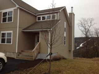 Brand new luxury home with spectacular views - Tannersville vacation rentals