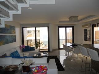 Duplex Penthouse In Ipanema 2 Suites - Rio de Janeiro vacation rentals