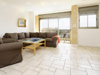 Penthouse in West Raanana: in a complex with Pool and Garden - Ra'anana vacation rentals