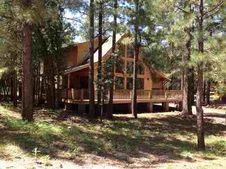 Cozy Cabin with Deck and Internet Access - Pinetop vacation rentals