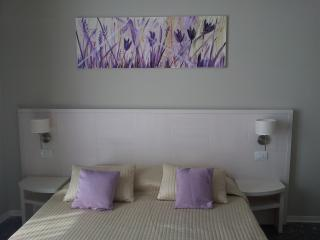 Nice 1 bedroom Apartment in Florence with Internet Access - Florence vacation rentals