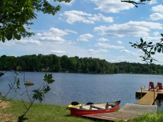 Beautiful Modern LAKEVIEW Cottage in Haliburton - Haliburton vacation rentals