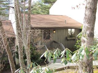 Nice 2 bedroom Vacation Rental in Sapphire - Sapphire vacation rentals