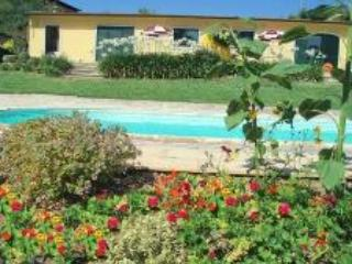 Peaceful Rural Chalet Apartment near Aveiro - Centro Region vacation rentals