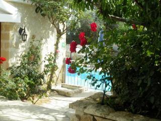 Polis, Paphos,   Rose Garaden Villa Peristerona - Pedoulas vacation rentals