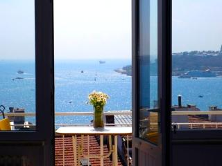 Bos & Old City Vus. 3bd, 2bath, 50% off winter, C3 - Istanbul vacation rentals