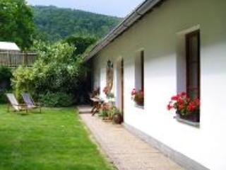 Holiday House - Sazava - Sazava vacation rentals