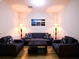 Amazing 1BR in the Heartof Tbilisi Apartaments Besiki - Shida Kartli Region vacation rentals