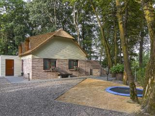 Maastricht, Luxery Holiday Home 2-6 P. - Flanders vacation rentals