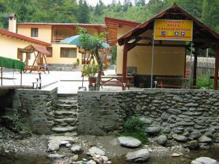 Bungalow Balea Transfagarasan,Transfagarasan Road - Cartisoara vacation rentals