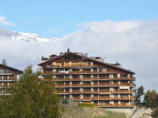 Aiglon E3 - Nendaz vacation rentals