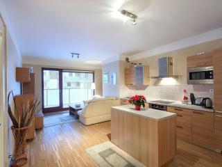River Diamond Apartment - Prague vacation rentals
