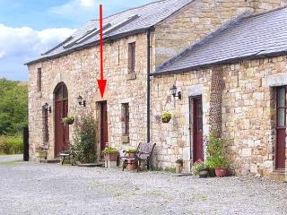 LAPWING COTTAGE, woodburner, arable farm setting, shared games room, pets welcome, terrace cottage near Newcastleton, Ref. 903701 - Newcastleton vacation rentals