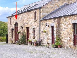 CURLEW COTTAGE, woodburner, pet-friendly, shared games room, near Newcastleton, Ref. 903702 - Newcastleton vacation rentals