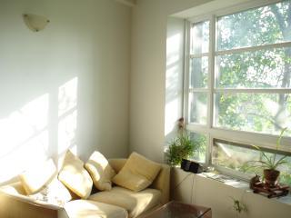 Beautiful 1 bedroom Condo in Montreal - Montreal vacation rentals