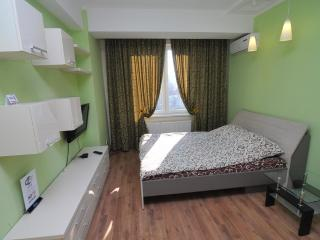 Perfect apartment in the very center - Bucovat vacation rentals